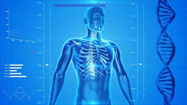 मानव शरीर के बारे में तथ्य | Amazing Facts about Human Body |
