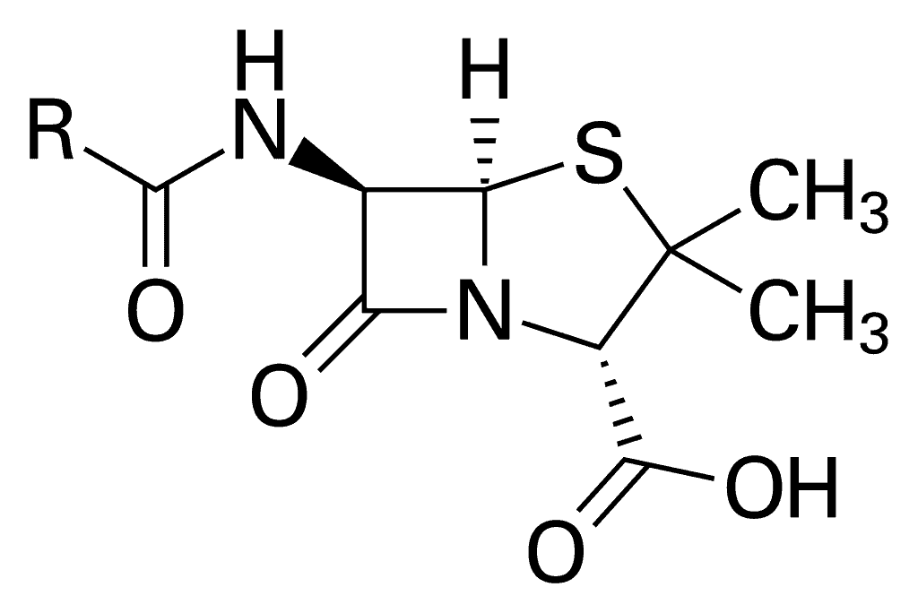 Penicillin Core