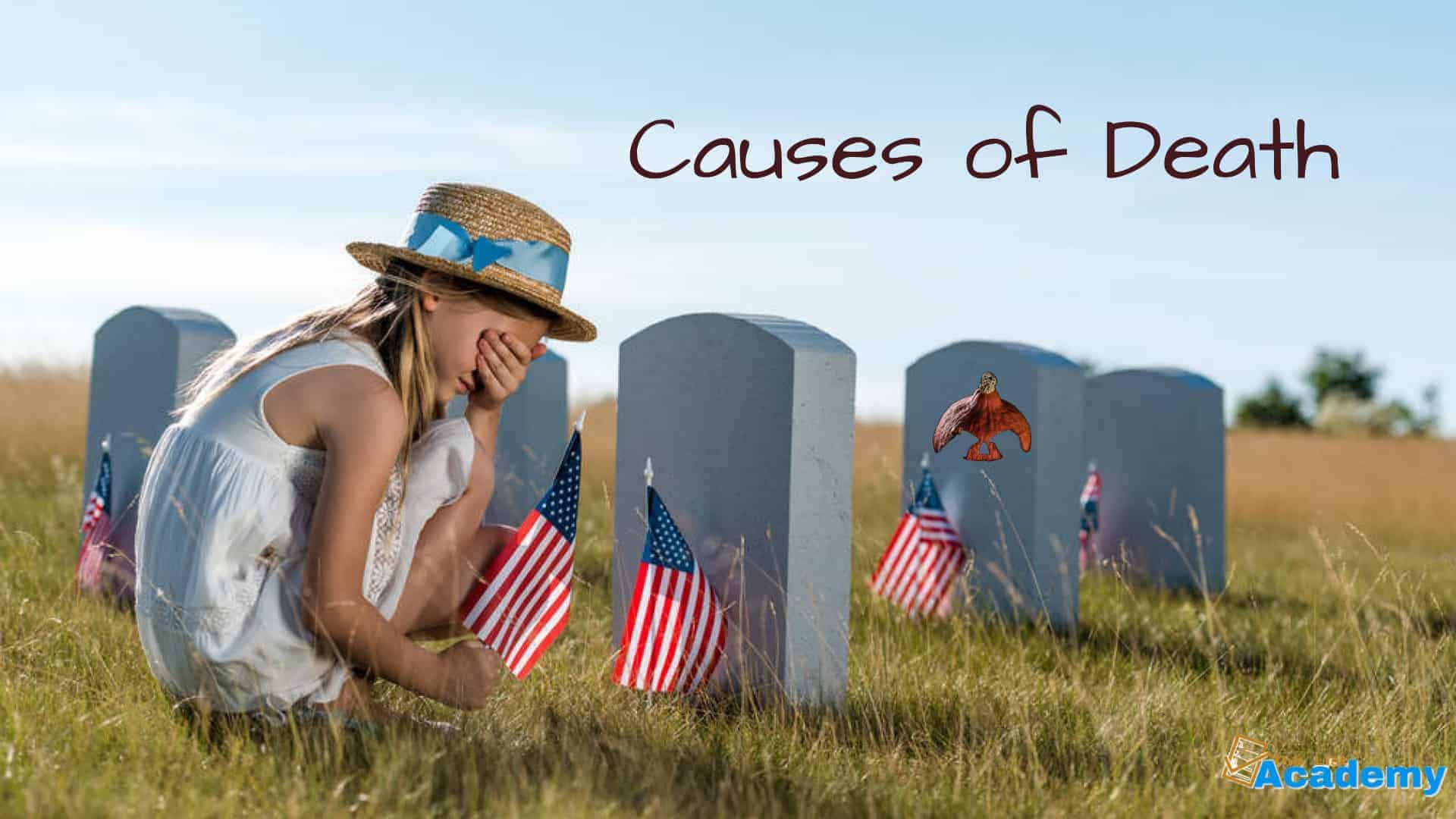 Cover Image For List : 17 Leading Causes Of Death Worldwide